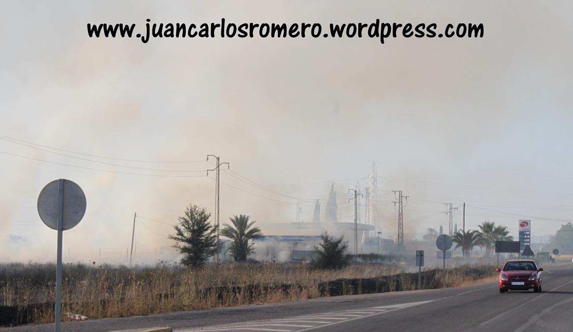 aSalidaSanJeronimo-Sevilla-llamas-junto-GasolineraSaras 014