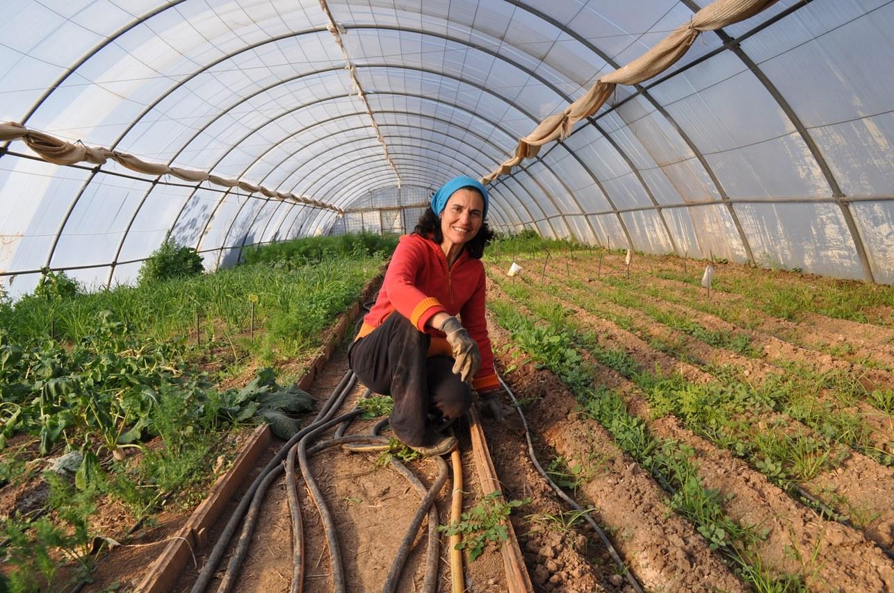 La comunidad reparte el trabajo, tiene huertos orgánicos y produce buena parte de la energía que consumen